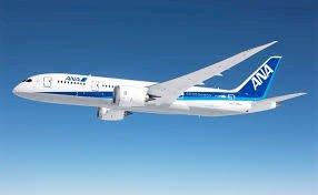 JAL、ANA国内線航空券 格安で手配します。夏休み、GW、年末年始も利用可能です
