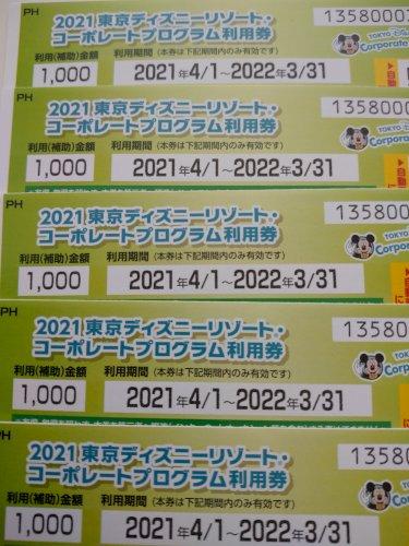 ディズニーコーポレートプログラム利用券1000円 10枚あります